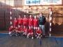 Football Friends Liga RS 2013